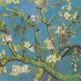 Vincent van Gogh: Mandloň v květu (1890, Muzeum Van Gogha, Amsterdam)