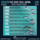 Taiji
